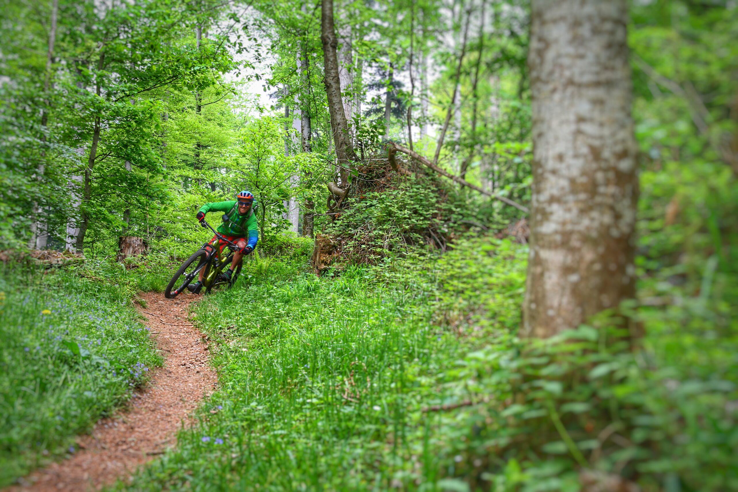 Mountain Bike Improver Course